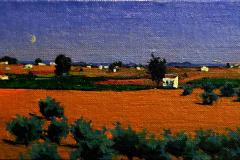 13. Avistamientos manchegos VIII (Barbecho, luna y viña), 2012, Daimiel, Ciudad Real. Óleo sobre lienzo sobre tabla, 12x27 cm. 80€